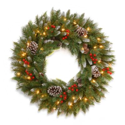 National Tree Frosted Berry 30-Inch Wreath Pre-Lit with 100 Clear Lights