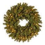 Norwood Fir 2-Foot Wreath Pre-Lit with 50 Clear Lights