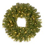 Norwood Spruce 2-Foot Wreath Pre-Lit with 50 White LED Lights and Timer
