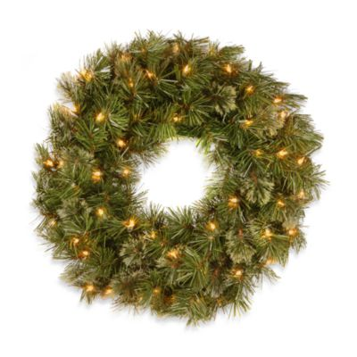 National Tree 24-Inch Wispy Willow Wreath Pre-lit with 50 Clear Lights
