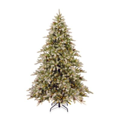 7.5 Foot Snowy Concolor Pre-Lit Fir Tree with 800 Clear Lights