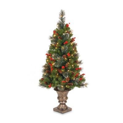 National Tree 4-Foot Crestwood Spruce Entrance Tree Pre-Lit with 100 Clear Lights
