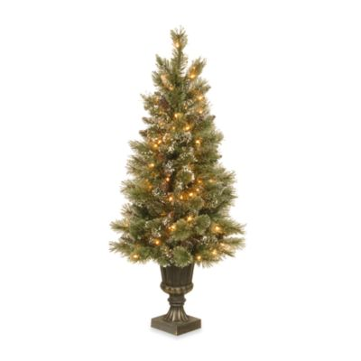 4 Foot Glittery Pre-Lit Pine Entrance Tree with 100 Clear Lights
