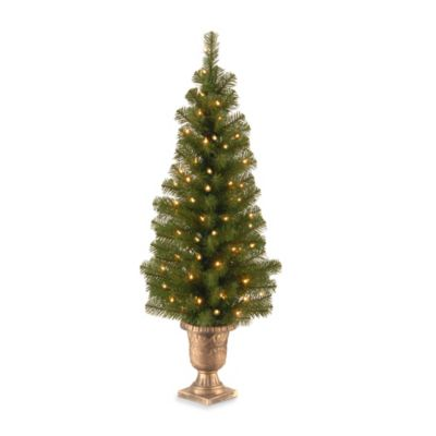 National Tree 4-Foot Montclair Spruce Entrance Tree Pre-Lit with 50 Clear Lights