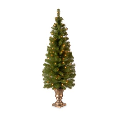 5 Foot Montclair Spruce Pre-Lit Entrance Tree with 100 Clear Lights