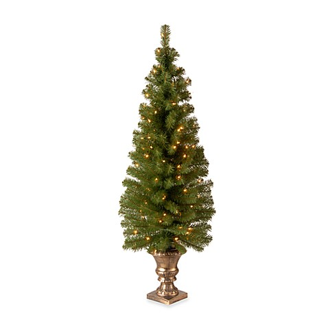 National Tree 5-Foot Montclair Spruce Pre-Lit Entrance Christmas Tree with Clear Lights