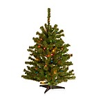 3-Foot Eastern Spruce Pre-Lit Tree with 50 Multicolored Lights