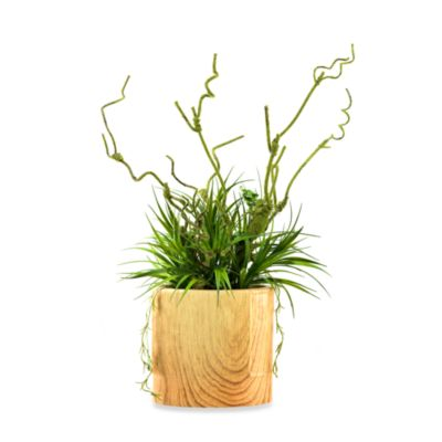D & W Silks Wild Grass and Moss Branch in Wooden Oval Planter