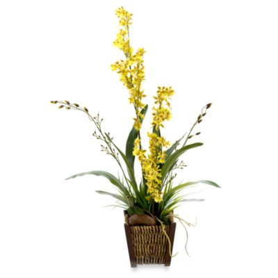 D & W Silks Oncidium Orchids in Rattan-Wrapped Footed Planter