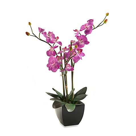 D & W Silks 24-Inch Tall Purple Orchids in Black Ceramic Planter