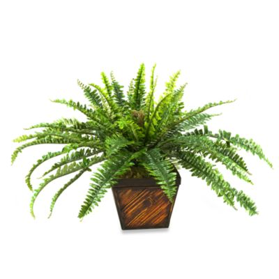 D & W Silks Fern in Square Bamboo Planter