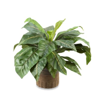 D & W Silks 24-Inch Tall Birdnest Palm in Round Ceramic Planter