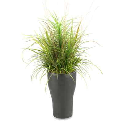 40-Inch Mixed Grasses in Tall Resin Planter
