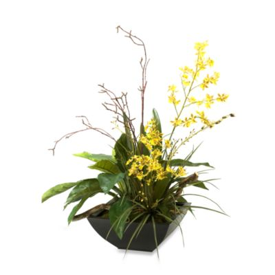 D & W Silks Oncidium Orchids with Birdnest Fern and Willow