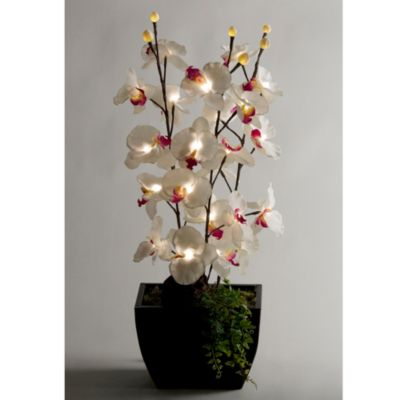 D & W Silks Lighted Orchids in Rectangular Metal Planter
