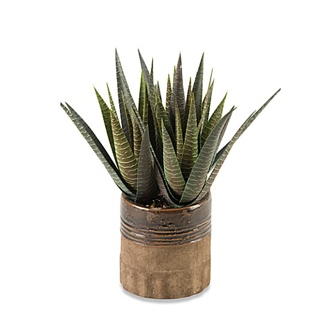 D & W Silks Striped Agave Plant
