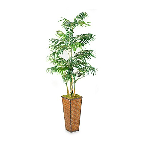 D & W Silks 5.5-Foot Robellini Palm in Square Metal Planter