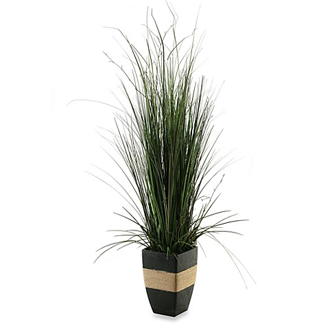 D & W Silks 44-Inch Tall Onion Grass in Square Planter