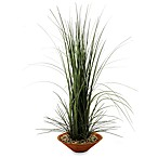 D & W Silks 40-Inch Tall Onion Grass in Brown Bowl