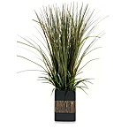 D & W Silks 28-Inch Tall Onion Grass in Rectangle Planter with Zebra Pattern