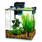 Vertex 2.7-Gallon Desktop Aquarium Kit