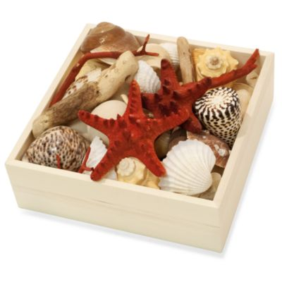 Ocean-Fragranced Potpourri in Decorative Wood Box