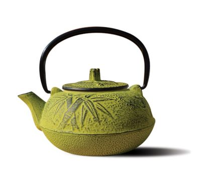 "Tetsubin ""Osaka"" oz. Cast Iron Teapots with Infuser in Moss"