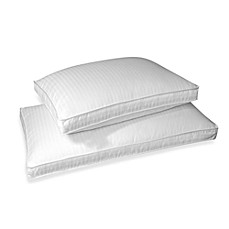 Real Simple® Level 3 100% Cotton White Down Pillow