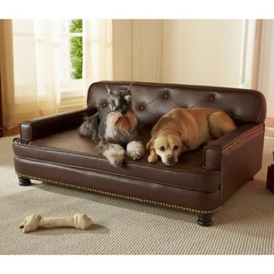 Pets in Brown Pet Home Solutions