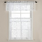 Carina Burnout Window Curtain Tier Pairs