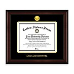 Texas Tech University 22K Gold-Plated Medallion Diploma Frame