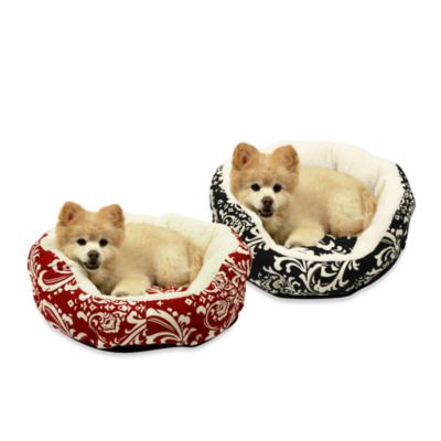 Best Friends by Sheri Duchess Cuddler Small Pet Bed in Amsterdam Red