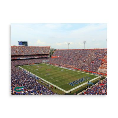 University of Florida Canvas Art Team Stadium