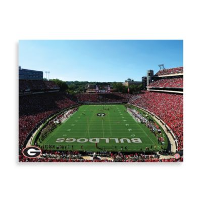 University of Georgia Canvas Art Team Stadium