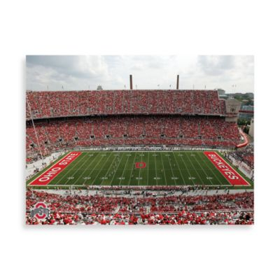 Ohio State Canvas Art Team Stadium