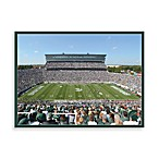 Michigan State Canvas Art Team Stadium