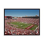 Florida State Canvas Art Team Stadium