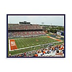 University of Illinois Canvas Art Team Stadium