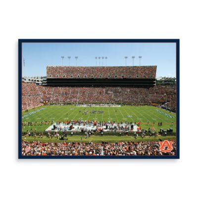 Auburn University Canvas Art Team Stadium