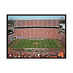 Clemson University Canvas Art Team Stadium