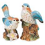 Fitz & Floyd Toulouse Multi 4.25-Inch Bird Salt & Pepper (Set of 2)