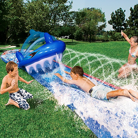 3-D Shark Bite Water Slide