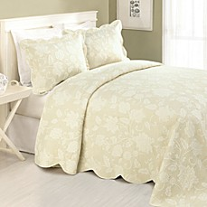 Janet Standard Pillow Sham in Ivory