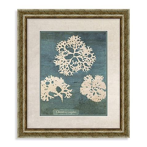 buy coral framed wall art i from bed bath beyond. Black Bedroom Furniture Sets. Home Design Ideas