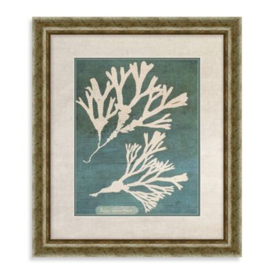 Coral Framed Wall Art II