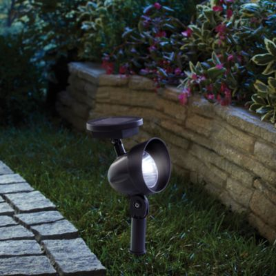 Patio LED Solar Spotlight