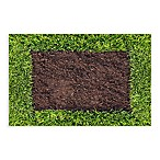 Bungalow Flooring New Wave Dirt and Turf Doormat