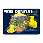 Bungalow Flooring New Wave Blue and Yellow Presidential Lemons Doormat