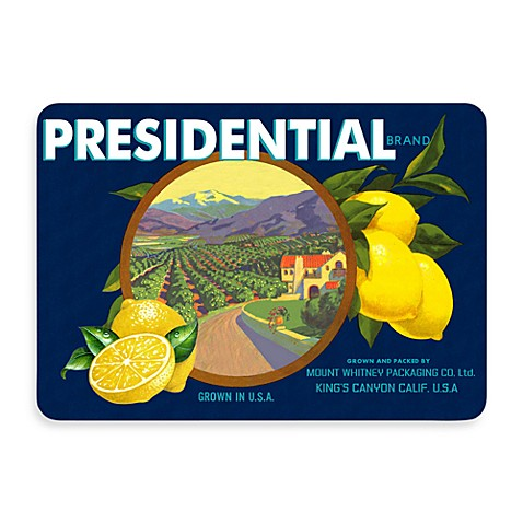 Bungalow Flooring New Wave 22-Inch x 33-Inch Blue and Yellow Presidential Lemons Door Mat