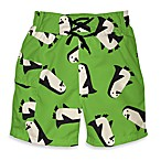 i play.® Mod Ultimate Swim Diaper Penguin Pocket Trunks